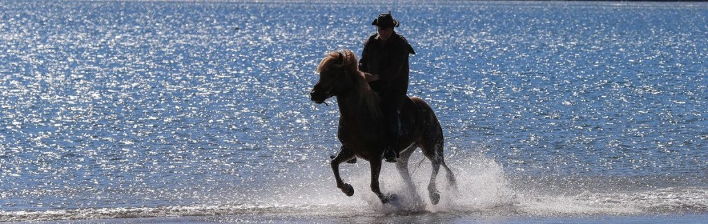 Spraying water: A horseback rider on an Icelandic shore.