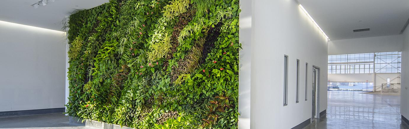 Vertical greening – more than just a token of wholesome environmental thinking.