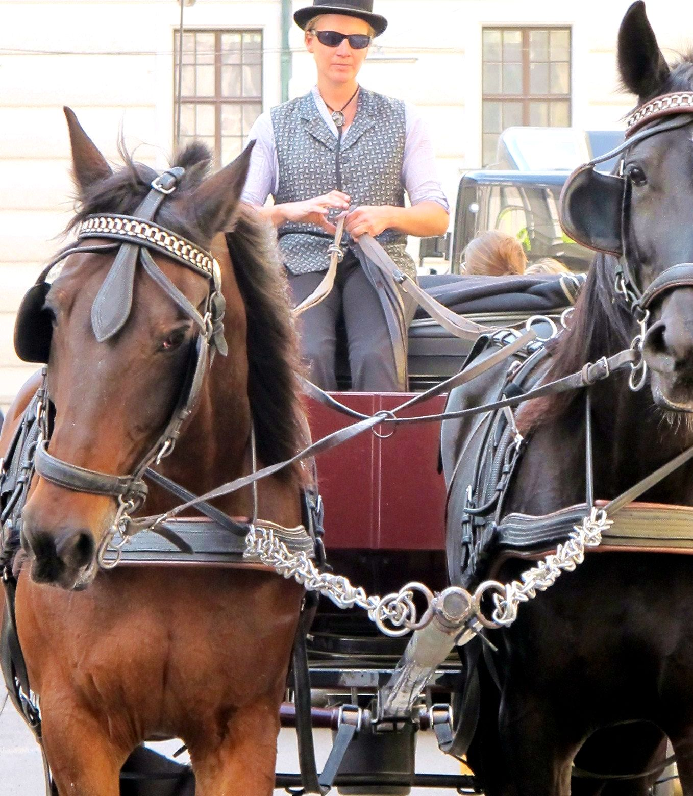 * You may have heard of the Fiaker which is found as a tourist attraction and a means of transport in larger Austrian cities. Classically, instead of on one, it works on two horse-powers. The coachman - or woman - is called Fiaker as well.
