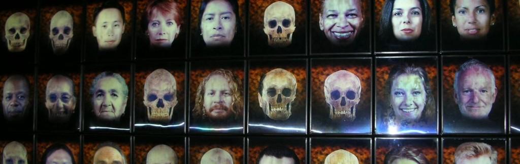 Humankind: Different races, different faces. The secrets about man's evolution.