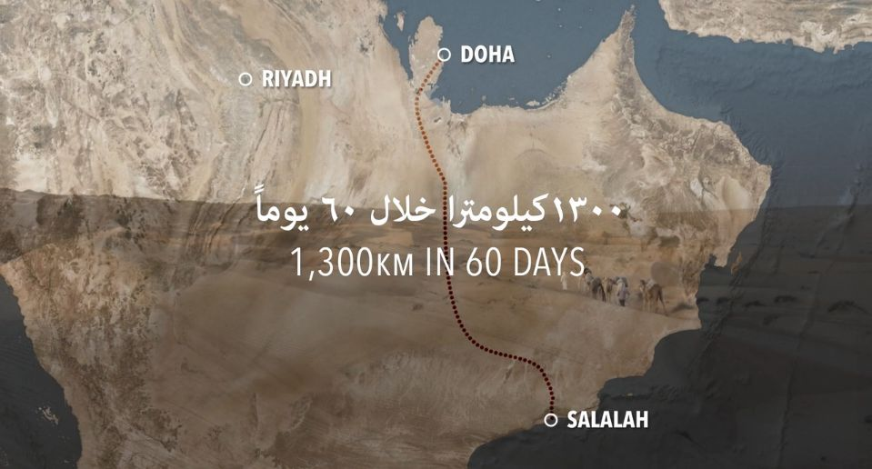 The 2015 expedition - a journey of 1,300 kilometres - will depart from Bait Mirbat Salalah on the 10th of December and is aiming to reach Doha at the end of January 2016. The chosen route is identical with the one taken in 1930 and will again be accomplished solely on foot and by camel train. The shows the map of the route.